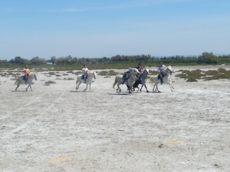 2017 - L'Ascension en Camargue